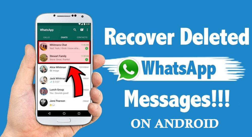 See WhatsApp Deleted Messages